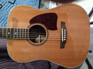 Accoustic/electric guitar with hard case