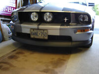 2005-2009 Mustang GT eleanor style grille