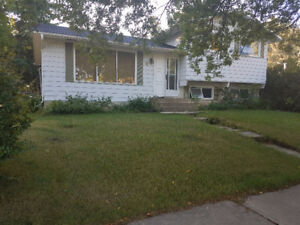 Rooms for Rent, St Albert