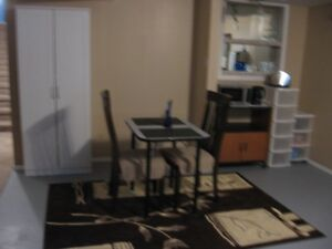 One bedroom suite in lower level