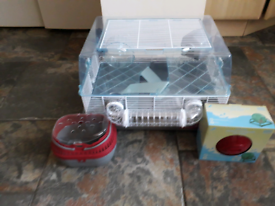 Young female Syrian hamster with cage , accessories