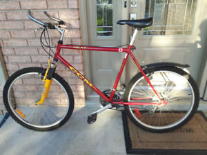 CCM bycicles for sale, 12 speeds, excellent condition
