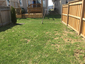 Backyard fencing - price is all inclusive material +labour