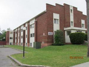 ADULT BUILDING: Upper, Bright & Cozy 1 Brm + Den - Aval Dec/Jan