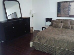 Rent Furnished Room for professional only in 2 bedroom townhouse
