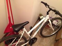 New bike for younger girl