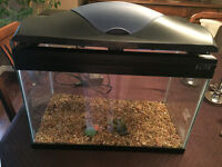 VERY CLEAN 10 gallon aquarium with lid and gravel for sale.