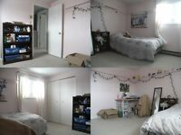 Student room, all furnished, close to UW, bus 201/202