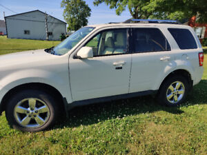 2010 Ford Escape Limited 4x4 V6