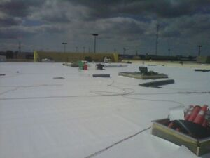 Flat Roofers! Work Every Day! Flat Roofing! Kitchener / Waterloo Kitchener Area image 3