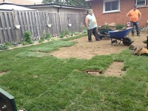 lawn  aeration London Ontario image 6