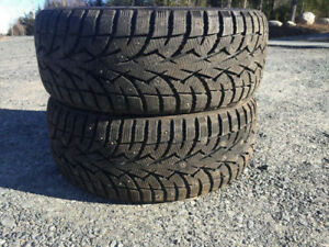 Two 215/45R17 Winter Tires