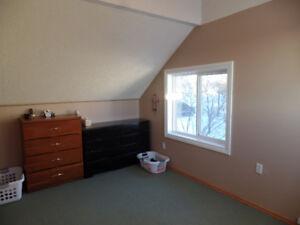 1 Bedroom Shared Rental