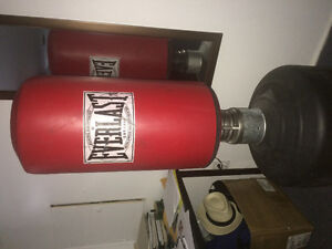 Punching bag everlast on heavy stand