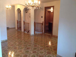 71/2 sunny and clean apartment in frist floor triplex (Lasalle)