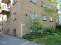 1-bedroom apt close to downtown Kingston (148 Pine St.)