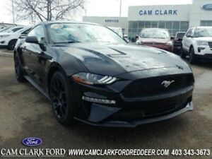 2018 Ford Mustang EcoBoost Premium Fastback  | Clean Carfax |