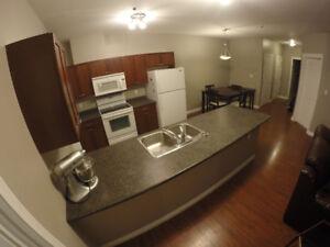 3 Bed 2 Bath Main Floor Condo