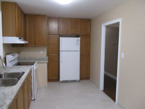 Beautifully Renovated 3 Bdrm Includes Utilities