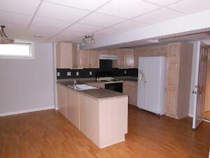 Bright basement suite