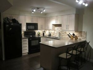 LARGE! Downtown 2+1 1br - prkng/lockr 870 sqft ideal for couples