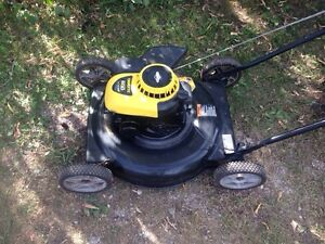 Brute gas lawnmower- good shape can deliver