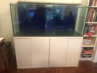 Freshwater or marine aquarium with sump and cabinet