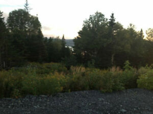 Ocean View Lots. Located in a new subdivision on Random Island.