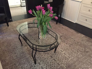 Glass and Iron Coffee Table - Port Hope