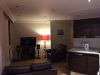 Lovely double room in modern 2 bedroom Dalston flat