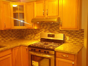 Beautiful furnished one Bedroom basement apartment for rent
