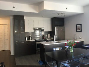 Gorgeous 2 bedroom corner apt great plateau location - May 1st