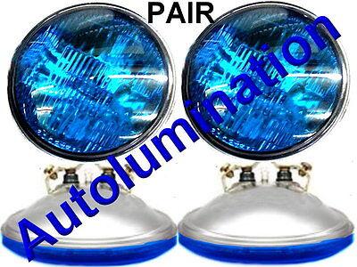 New 4416-B Blue 12 Volt Par36 Sealed Beam Bulb 4416ST-Blue Spotlight 4-1/2 4416 Beam 12 Volt Spotlight