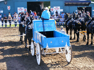 Heavy Horse Show Wagon, Cart and accessories. Moose Jaw Regina Area image 2