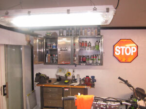 Professional  motorcycle restoration painting and more