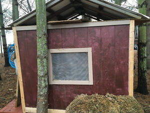 Great Chicken Coop for backyard chickens