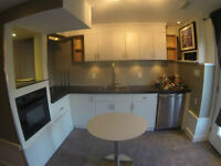 Bright, Furnished Walkout Basement - Inner City