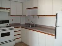 2 Bedroom Condo Apartment available NOV.1st/2015.