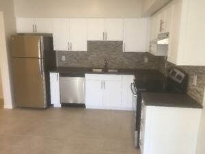 Luxury 2 BD + 2 BR condo for rent - Available Sept 15