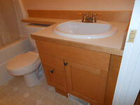 PRICE DROP -Matching Maple bathroom vanity/sink and wall cabinet