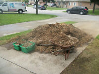 Woodchips for free
