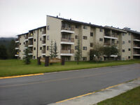 AUCTION  --  ELKFORD  CONDO  FOR  SALE  BY  AUCTION