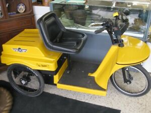 Canadian Made 3 Wheel Mobility Vehicle