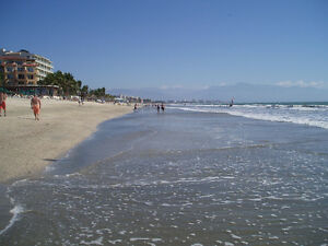 Beatiful fully Furnsh. Beach Condo. Nvo Vallarta. US$245,000