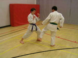 Adults Karate Classes in the Fall at the YMCA!! Peterborough Peterborough Area image 3