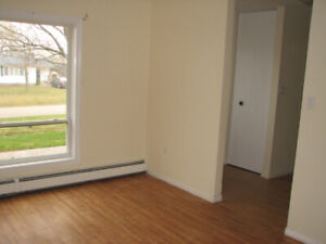 A 3-bedroom townhouse available September 1