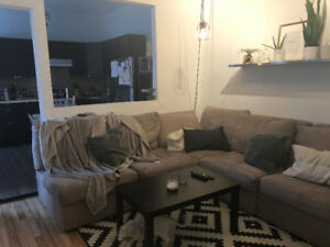Queer Guy looking For a Roommate, July 1st - Mile End