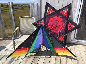 50 kites for sale / Collections 50 CV à vendre