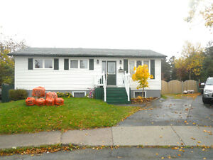 Single family, huge rear yard, garage, shed, fully developed St. John's Newfoundland image 1
