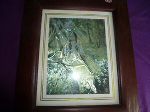 DUFEX FOIL PRINT - FOREST COMPANIONS - FRAMED Kingston Kingston Area image 2